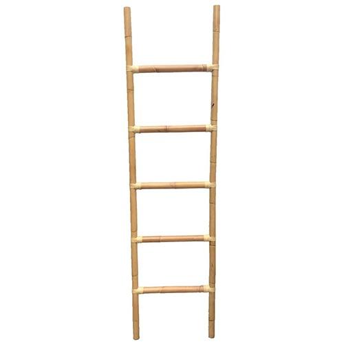 climb-ladder_f