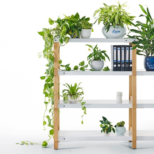 fit-bench-shelving-system_05